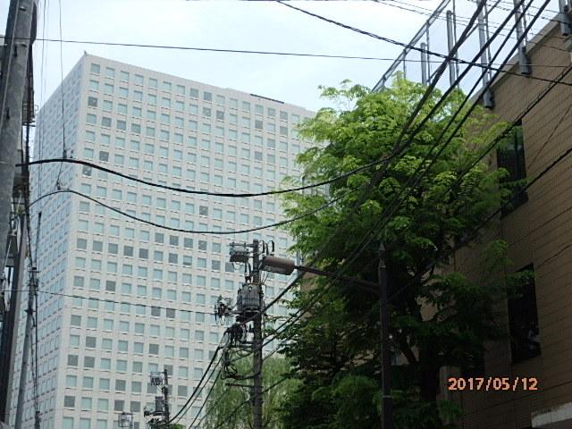 P5120035.jpg