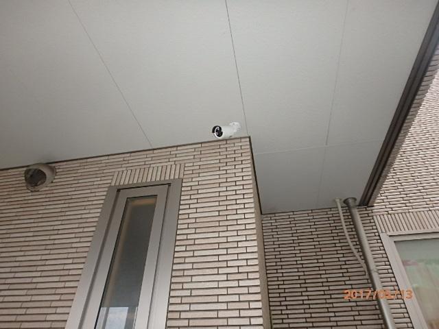 P5130129.jpg