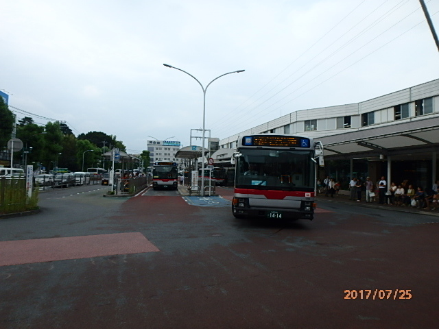 P7250121.jpg