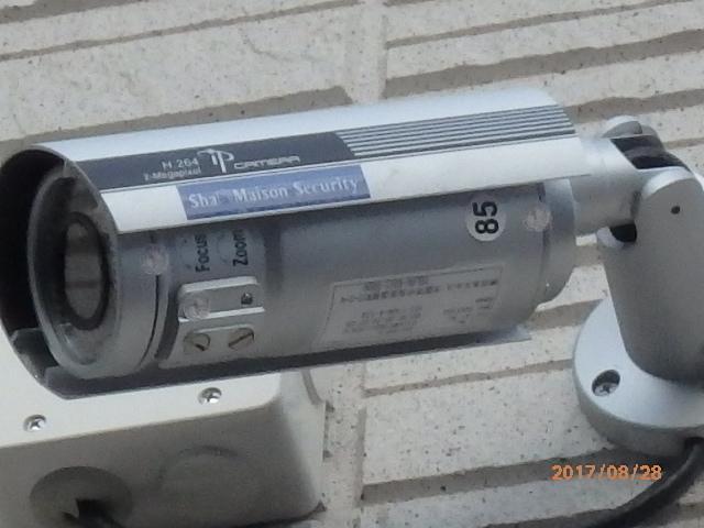 P8280284.jpg