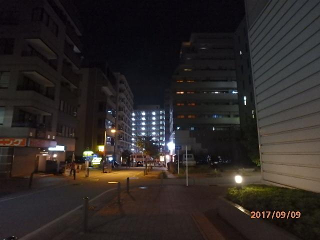P9090013.jpg