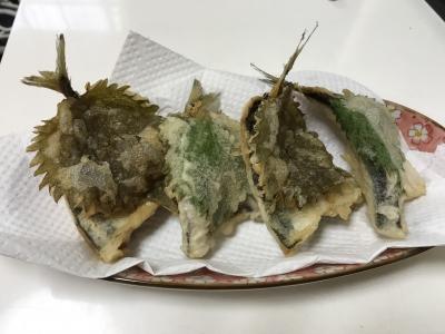 アジとマイワシの天ぷら