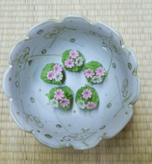 9月7日 秋桜