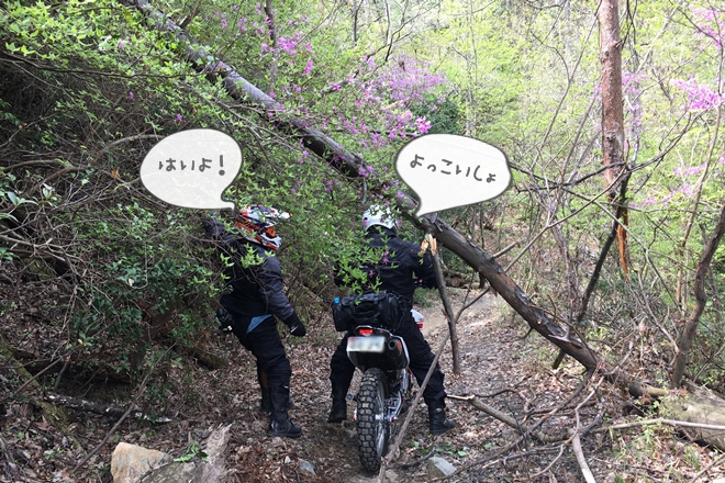 写真 2017-04-20 13 26 03