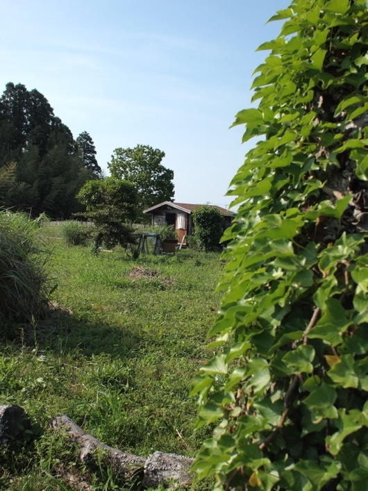 房総フィールドと小屋
