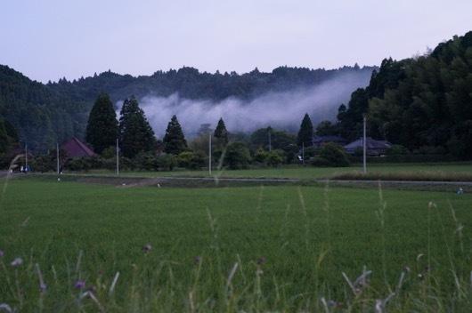 いすみの田園