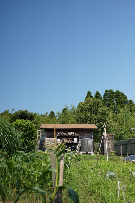 房総フィールド 小屋と畑