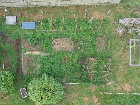 房総フィールドガーデン 草刈り前