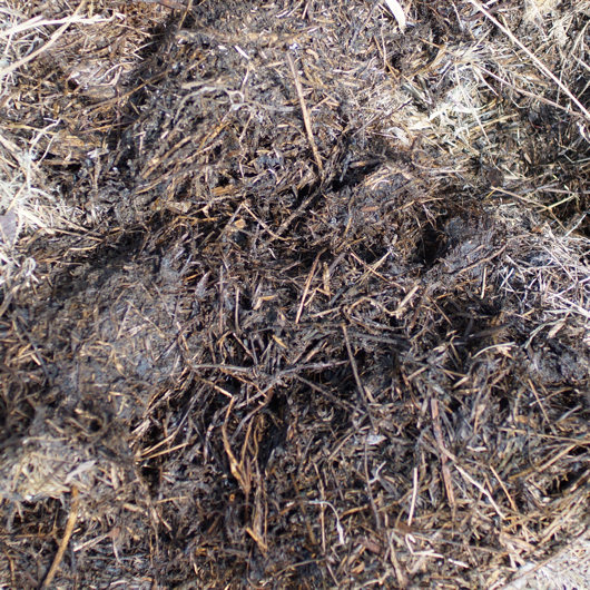 雑草堆肥3ヶ月経過