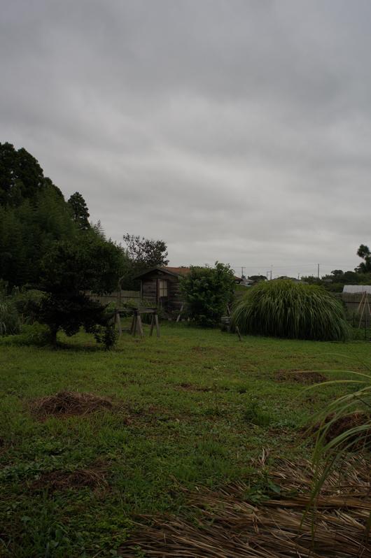 台風の影響で小雨まじりの房総フィールド