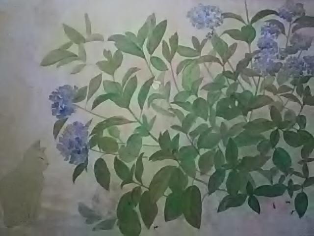 DSC_0008[4491]
