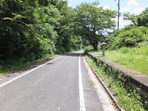 nigaki (4)