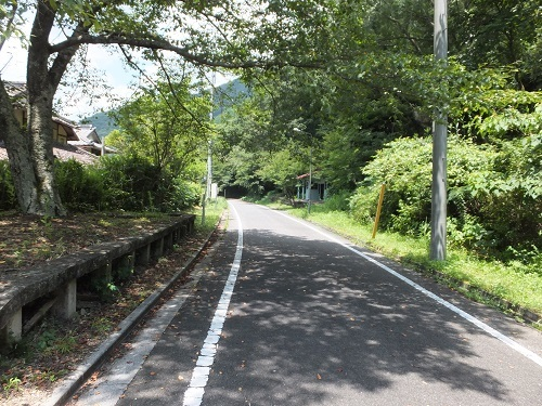 nigaki (5)