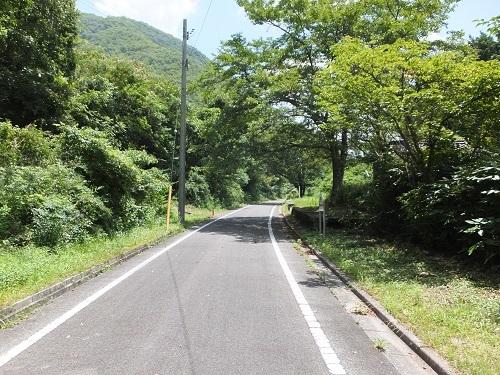 nigaki (1)