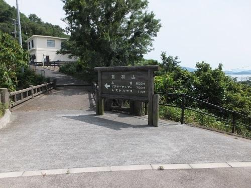 wasiuzan (5)