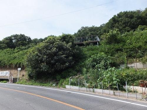 wasiuzan (1)