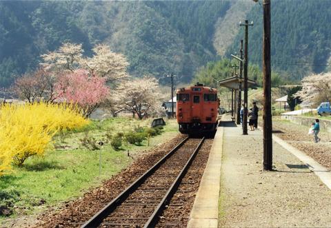yasuno (7)