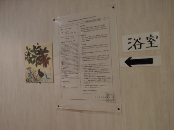 越前 浜茄子 201704 北陸旅行 (14)