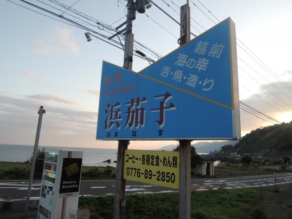 越前 浜茄子 201704 北陸旅行 (38)