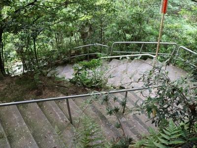 立木観音石段2