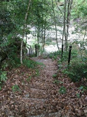 清納の滝への道