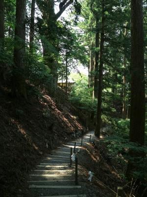 玉置神社参道3