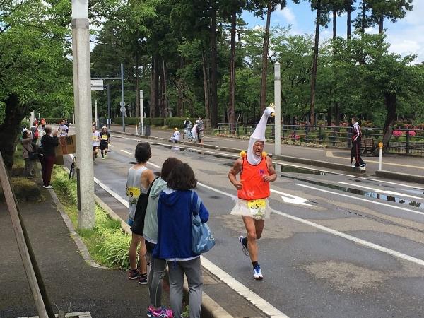 2017-06-04高田5_コウノトリ