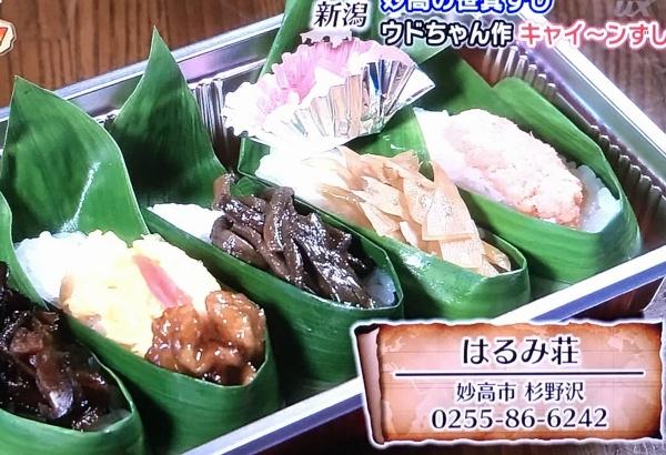 2017-06-17はるみ荘笹みすし
