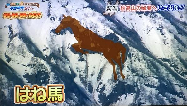 2017-06-17はね馬