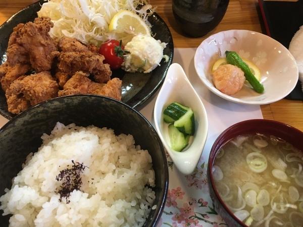 2017-07-04唐揚げ定食