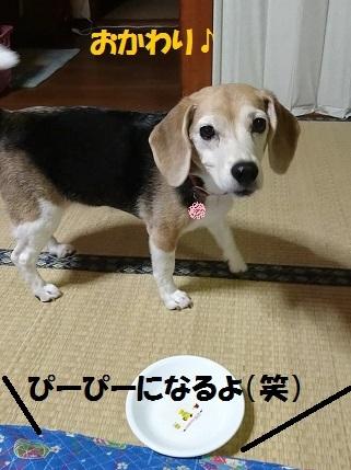 MOV_0410_000202.jpg