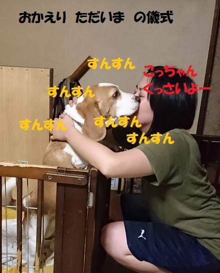 _20170727_205651.jpg