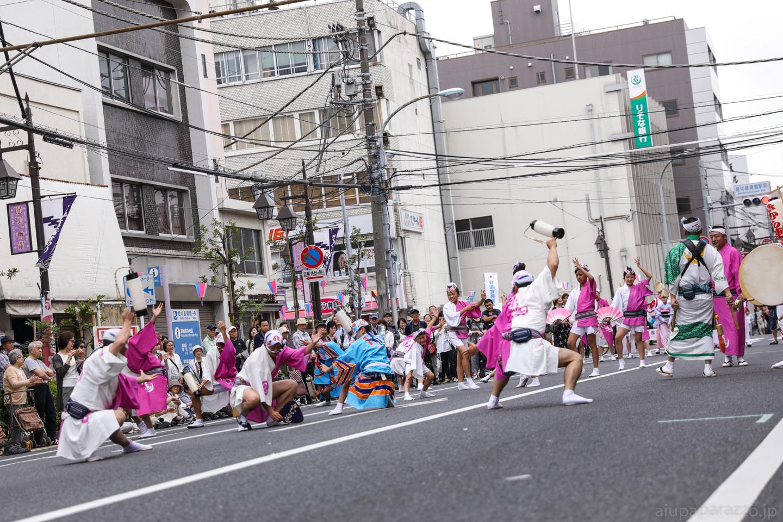 kimura2017hori-15.jpg