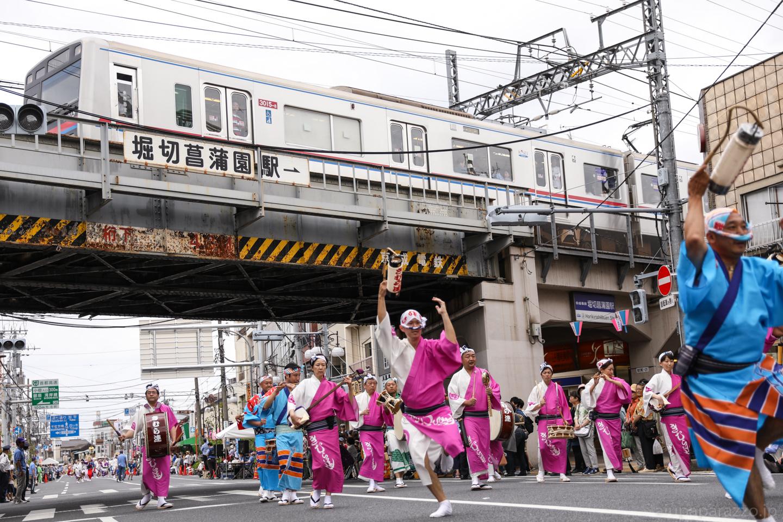 kimura2017hori-9.jpg