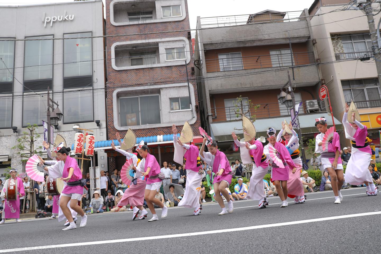 kimura2017hori2-14.jpg