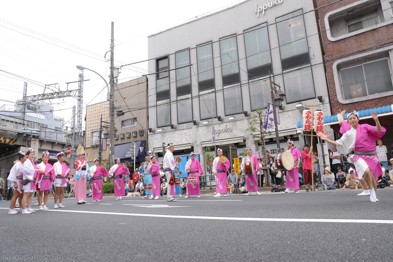kimura2017hori2-7.jpg