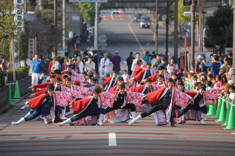 shinseijuku2016oya-4.jpg