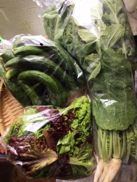 0513野菜