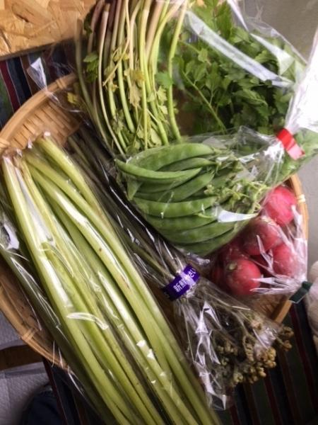 0513野菜2