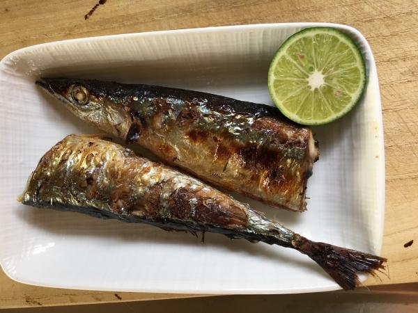 0826秋刀魚