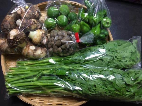 0916買ってきた野菜