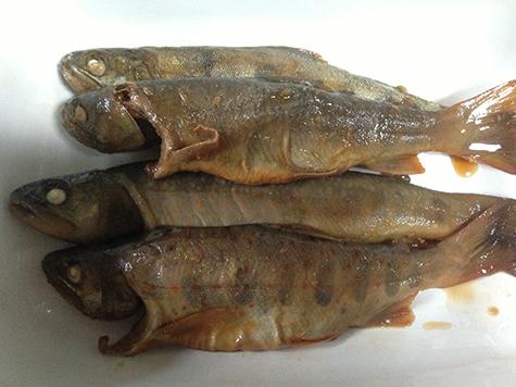 2017 6 26 岩魚とあまご04