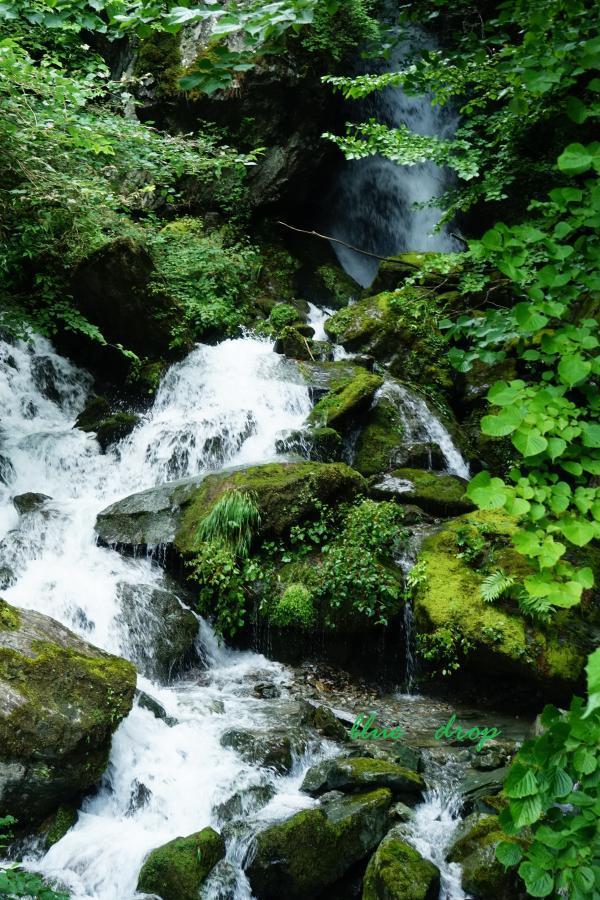 雨上がりの渓流