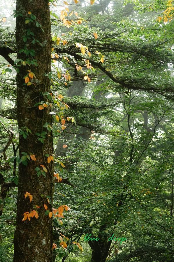 秋の気配*
