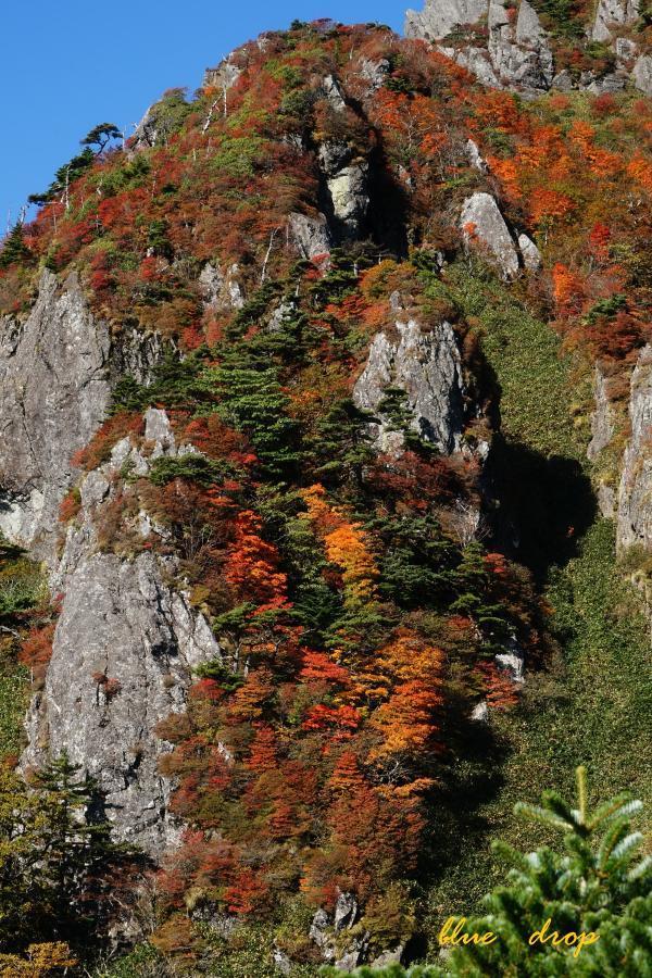 紅葉の岩肌