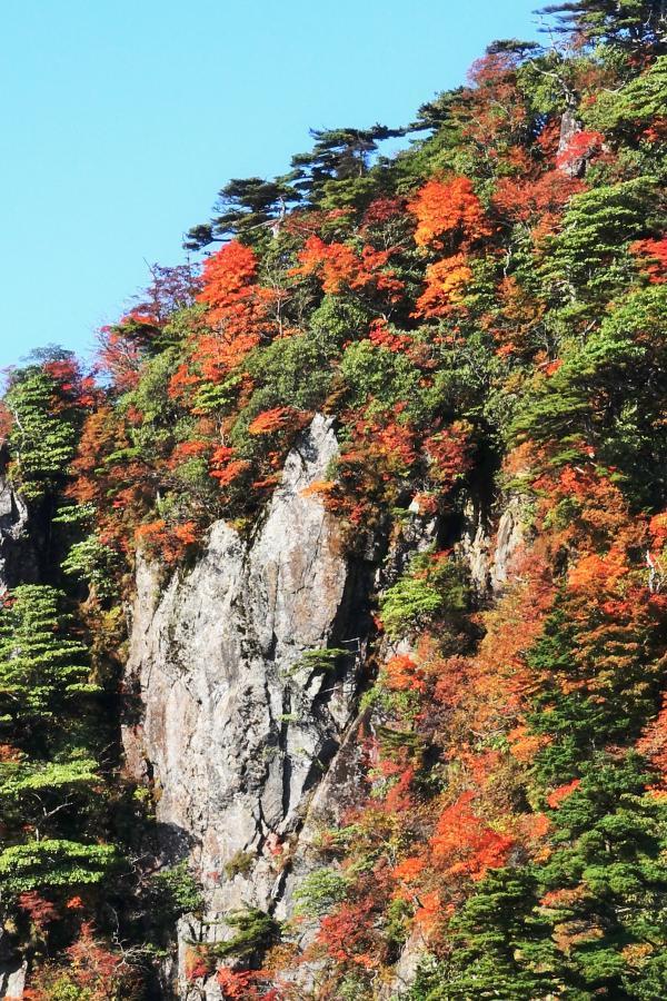 彩られた岩