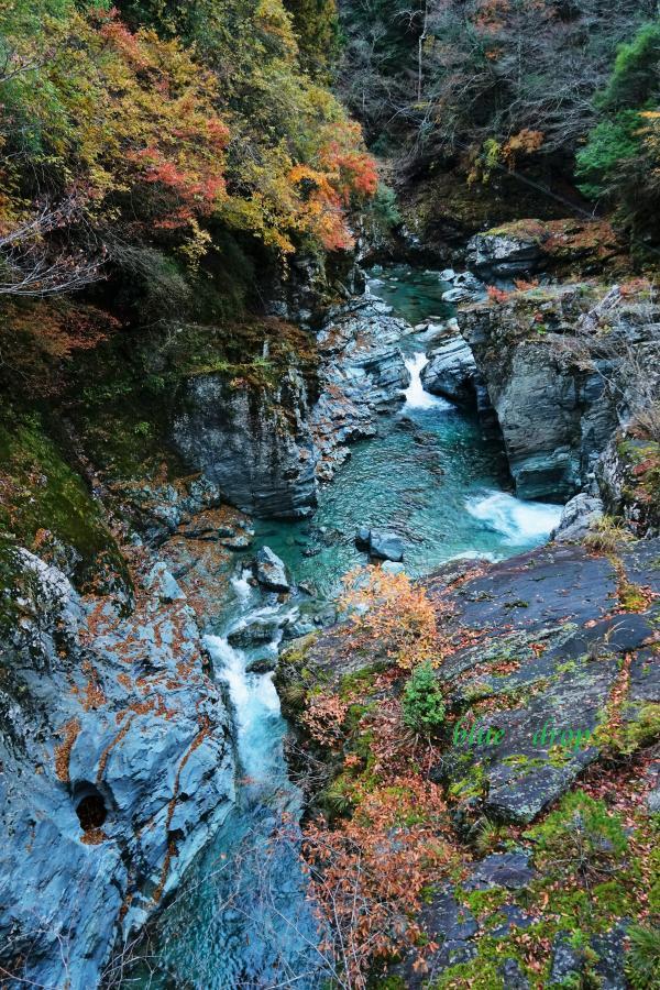 晩秋の渓谷*