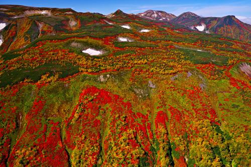 北海道・大雪山赤岳、銀泉台の紅葉