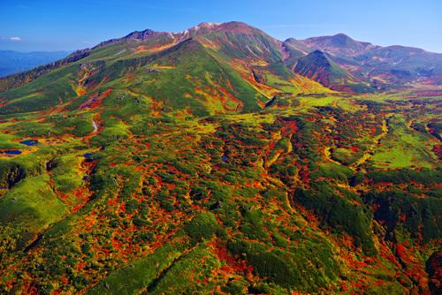 北海道・大雪山裾合平の紅葉