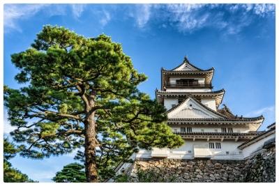 Kochi Castle 高知城 20170825